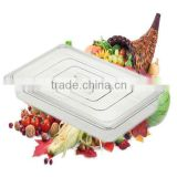 NSF GN 1/1 Food pan with plastic