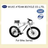 20 speed fat tire bicycles for sale 26 inch fat tyre bikes