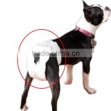 disposable dog diapers female washable male dog diapers disposable diapers for male dogs