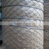 3'*100' Hex wire netting,wire diameter0.6mm to 1.2mm galvanized hexagonal wire netting
