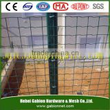 Anping hot selling Euro fence/holland wire mesh