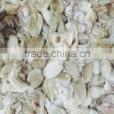 Frozen baby octopus vulgaris whole sale sea food from china exporter
