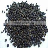 Fresh Indian Black Pepper