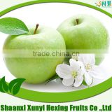 red green Apple fruit market /wholesale prices/ from china