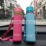 Glass Water Bottle - Eco-friendly Borosilicate Glass, No BPA, PVC and Lead, with Portable Nylon Sleeve,