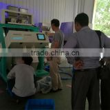 New generation CCD Plstic color sorter for industrial use