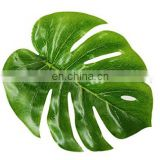 Tropical Palm Leaves for Hawaiian Luau Party Decoration Supplies and Favors