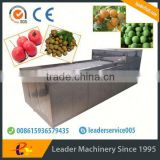 Leader dates seeds removing machine with Skype:leaderservice005