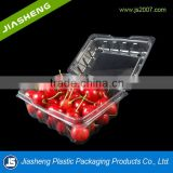 250g Disposbale Clear Plastic Container For Blue Berry