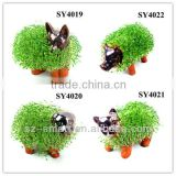 Home animal shape grass growing toy
