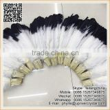 Bridal Costume Wings Feather Black Tip Turkey Feather