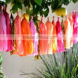 Party Favor Tissue Garland Strings And Paper Tassel