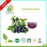 Manufacturer Supply High Quality Acai berry Powder/Acai berry Extract 10:1