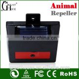Eco-friendly feature and Trap cat control ultrasonic cat repeller in pest control GH-193