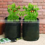 LDPE plastic nursery bag for grow seedlings