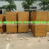 Bamboo pallet for concrete block machine sell better than wood pallet PVC pallet made in china