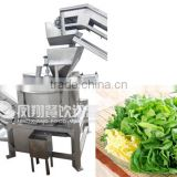 automatic vegetable drying machine, continuous dewatering machine, vegetable dryer Mob/Whatsapp: +86 18281862307 (May Liao)