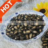Inner Mongolia China origin hotsale best black watermelon seed