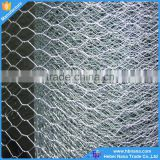 Heavy Galvanized fish trap hexagonal wire mesh /chicken wire netting