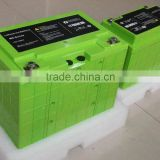 Green 48v 20ah lifepo4 battery with internal BMS for 1000w 48v scooter lifepo4 battery pack 48v 20ah