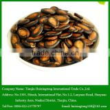 Dry Middle Sized Black Melon Seeds for Human Snack