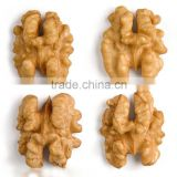 Chinese good quality walnut kernel