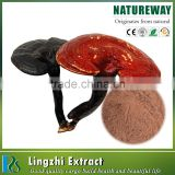 GMP factory natural organic ganoderma extract Powder, reishi mushroom extract, ganoderma lucidum extract