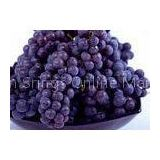 Health Currant Fresh Purple Grapes 23mm with Haccp , Global Gap