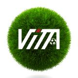 Guangzhou Vita Artificial Grass Industry Limited