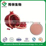 Factory Supply Bulk Organic Pomegranate Fruit Juice Concentrate Powder