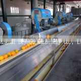 200 tons per day automatic Orange citrus processing line fruit juice production line
