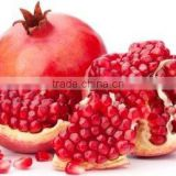 Fresh fruit export for usa