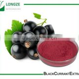 Spray-dried Black Currant Fruit Powder Black Currant Extract with anthocyanidins 25% 4;1,10:1 and 20:1