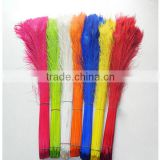Wholesale Cheap white indian peacock tail feather                                                                         Quality Choice