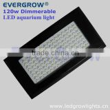 120w dimmable metal halide aquarium light