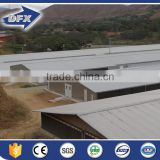 China Poultry Chicken Egg Poultry Farm
