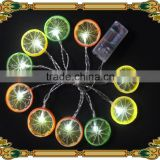 New style 2016 battery 2XAA fruit 10LED warm white string lights