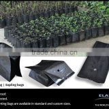 Planting poly bags