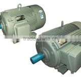Agitator Electric Motor