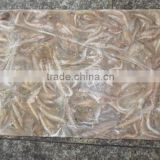 Frozen Block sand lance fish bait