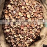Split Betel Nut (Supari) 85% good cut quality. we are the biggest supplier in Indonesia