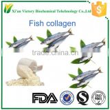 Factory supply Fish powder Fish powder pure collagen