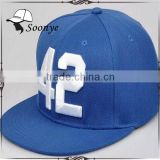Character Style and Unisex Gender snapback caps/ Adults Age Group Material snapback hats
