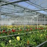 poly greenhouse covering film