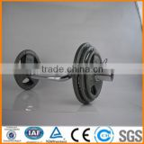 export standard olympic painting barbell weight plate in weight lifting suppliers