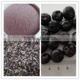 FD frozen dried blueberry whole with best price for sale                                                                         Quality Choice