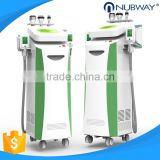 3 Sizes Of Handles 8L Water Tank 220 / 110V Cryolipolysis Cool Shaping Machine / Cryo Machine Loss Weight