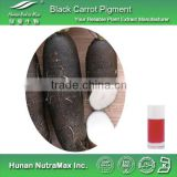 100% Pure Black Carrot Color,Water Soluble Black Carrot Powder Pigment
