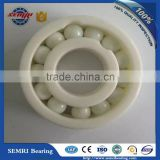 Made in China SEMRI Factory Full Ceramic Deep Groove Ball Bearing 6304a7 with High Performance