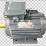 YE2 electric sliding gate motors